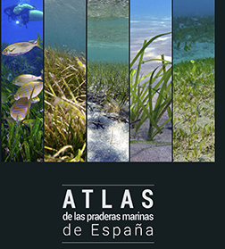 Seagrass Atlas of Spain